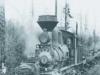 shaylocomotive